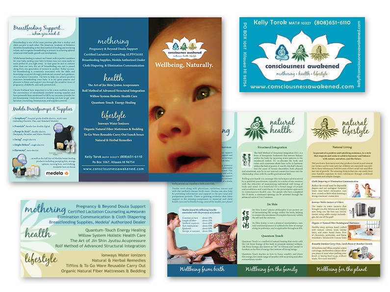trifold brochure: Consciousness Awakened